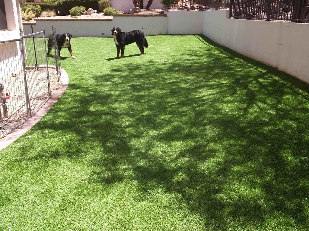 Synthetic Lawn Pet Turf Company Oceanside, Best Artificial Pet Turf Pricing