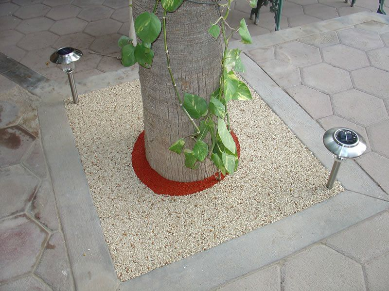 Rubber Tree Well Installation in Oceanside, Porous Tree Well